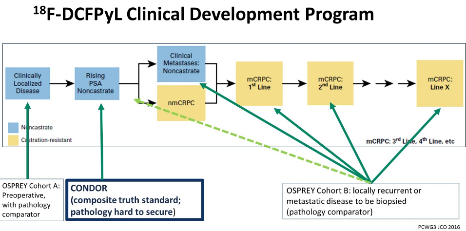 18f dcfpyl clinical development program