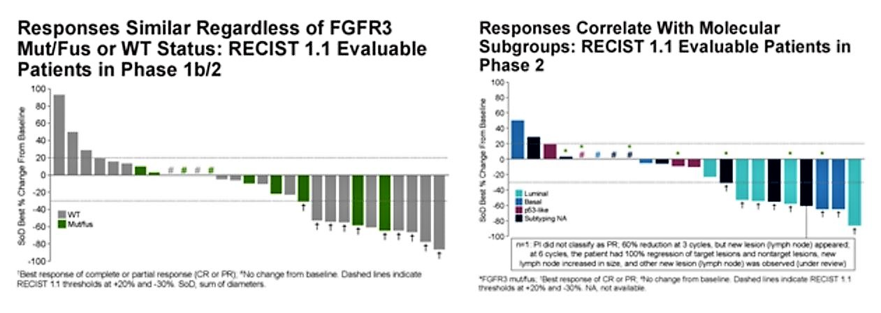 ASCO 2019 FIERCE 22 responses graph