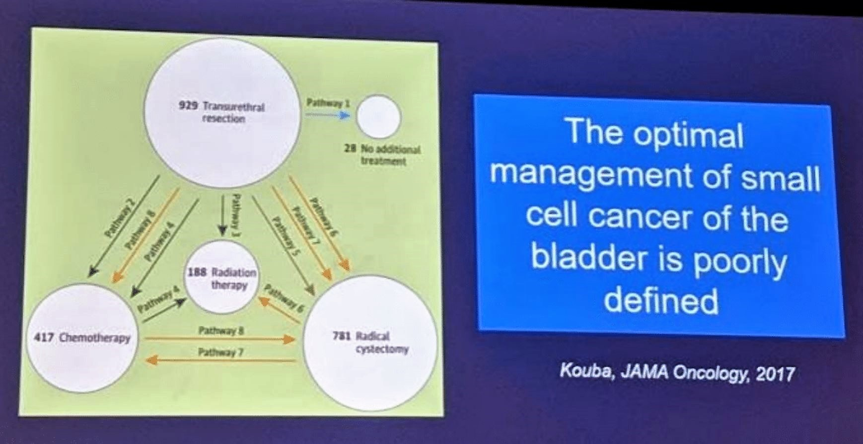 ASCO GU 2019 management of small cell bladder cancer