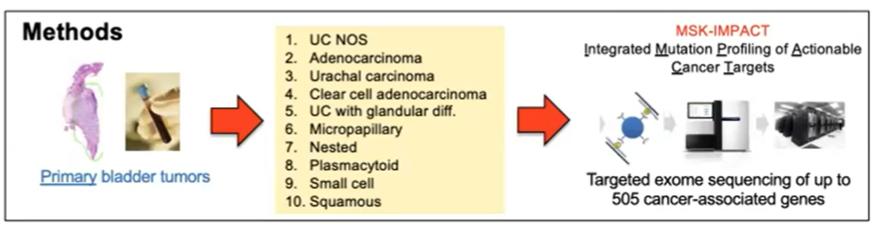ASCO_GU_bladder_tumors.png