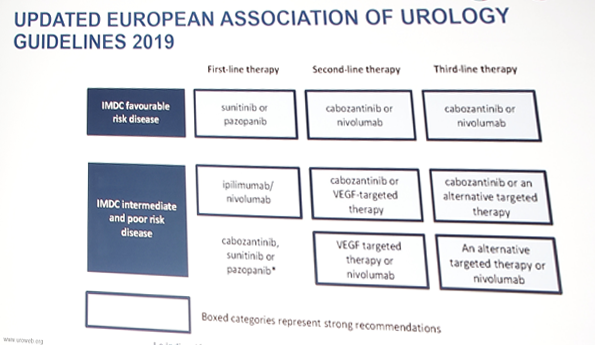 Eau 2019 The Challenging Landscape In Advanced Renal Cell Cancer Management