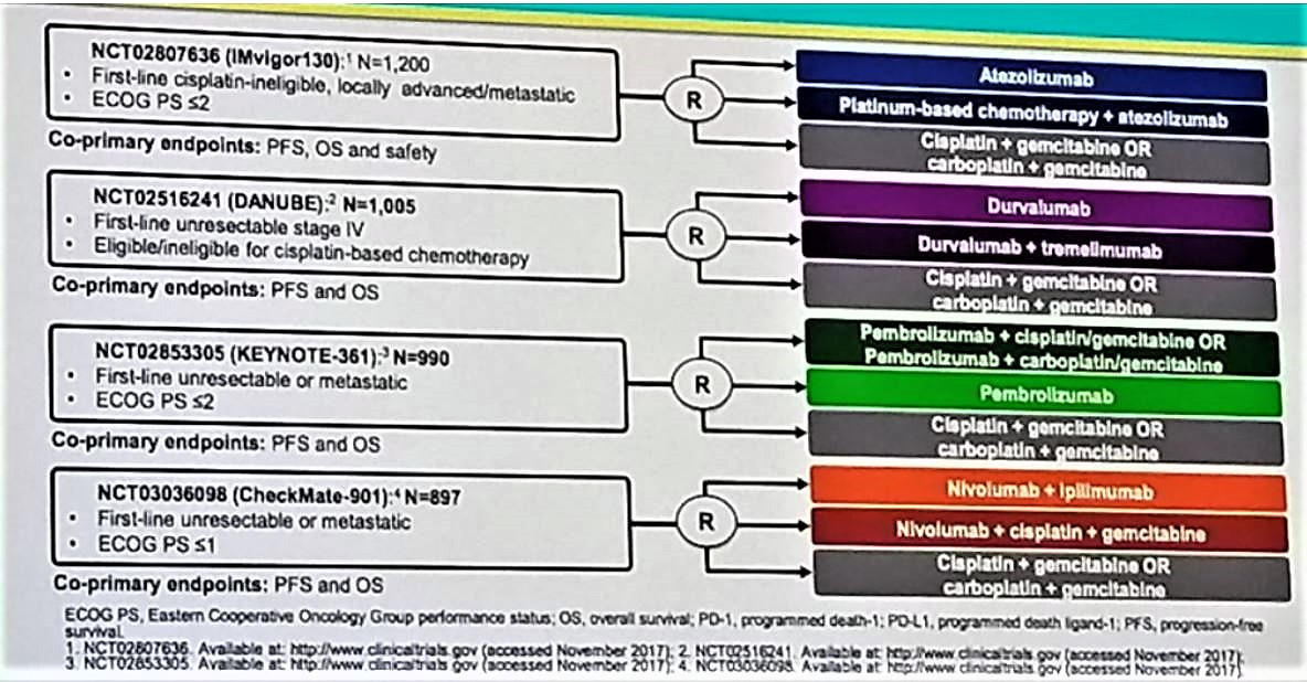 ESMO 2018 antibodies in urothelial cancer