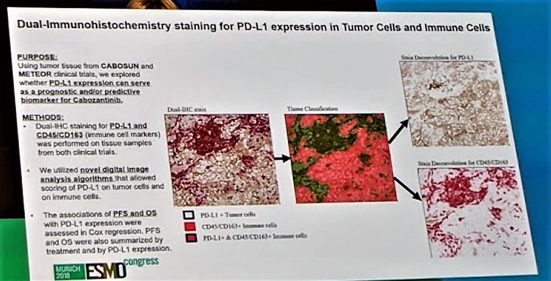 ESMO 2018 staining for PD L1