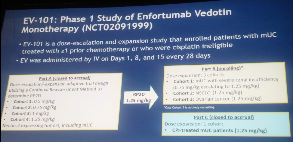 ASCO 2018: Updated Results from the Enfortumab Vedotin Phase