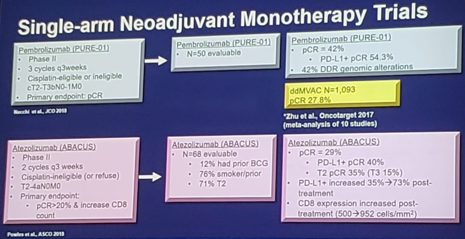UroToday ASCOGU2019 Immunotherapy Across Genitourinary Malignancies 4 Gully