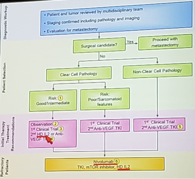 UroToday ASCOGU2019 Immunotherapy Across Genitourinary Malignancies 5 Gully