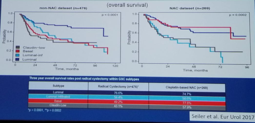 UroToday CUOS19 Basal Tumors Are the Most Sensitive to Neoadjuvant Chemotherapy