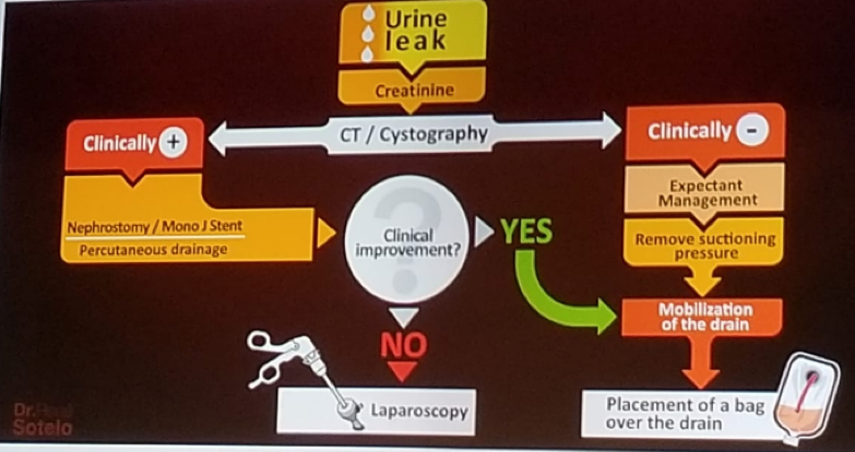UroToday ERUS2018 Clinical algorithm on how to manage a urinary leak