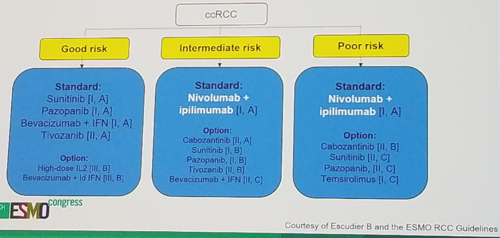 UroToday ESMO2018 ESMO guidelines for clear cell mRCC