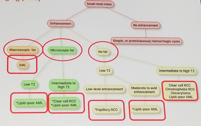 UroToday WCE2018 Proposed imaging algorithm of renal mass