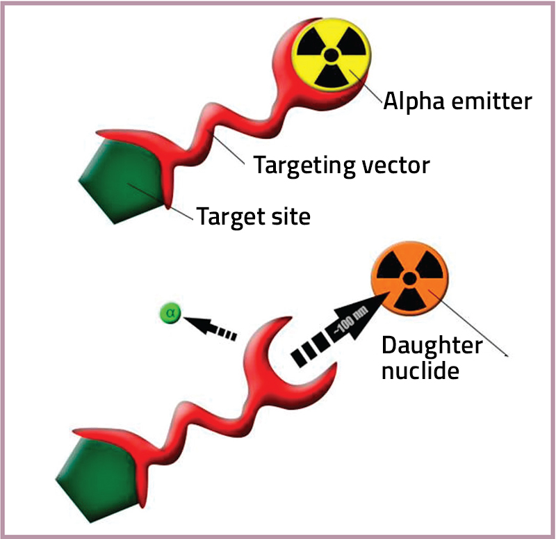 A Review On The Development of Targeted Alpha Therapy in