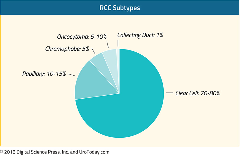 diagram-1-treatment-non-clear-cell-RCC@2x.jpg
