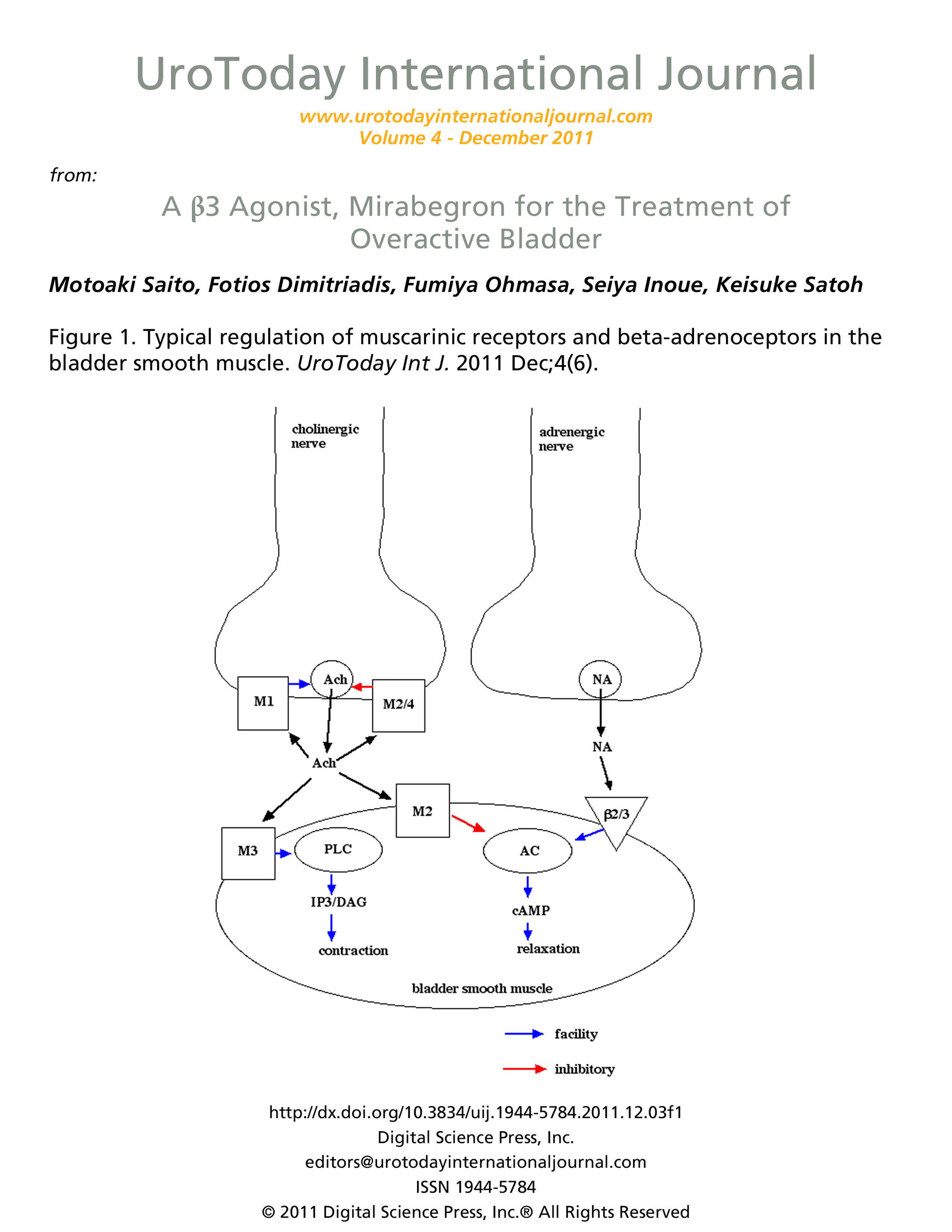 A 3 Agonist Mirabegron For The Treatment Of Overactive Bladder